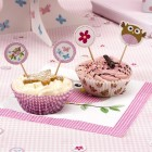 Little Owl Cupcake Picks - Pink