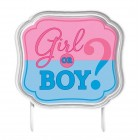 Girl or Boy? Gender Reveal Cake Topper