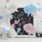 Baby Photo Booth Props - Little Lady Or Mini Mister