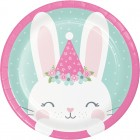 Bunny Lunch Plates