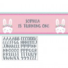 Bunny Giant Party Banner